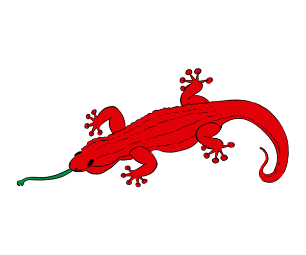 cuento-fabula-historia-relato-lagartija